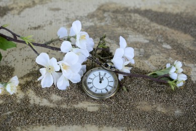 pocket-watch-1637392_960_720