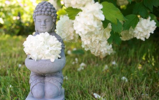 buddha-753016_960_720